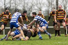 rugby-plabennec-6